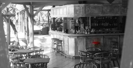 Le bar, hôtel***-restaurant, Le Rayon Vert