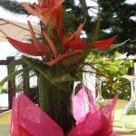 Composition floral, Le Rayon Vert